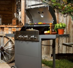 Assortiment barbecues
