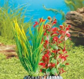 Assortiment Aquarium decoratie - Waterplant